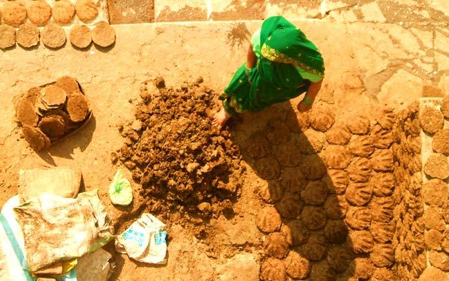 गौमाता के गोबर से घर बैठे मासिक 15000 कमाने का सुनहरा अवसर